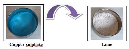 Tnau agritech portal crop protection - Bordeaux mixture ...