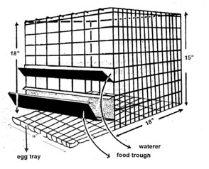 How to construct your poultry pen