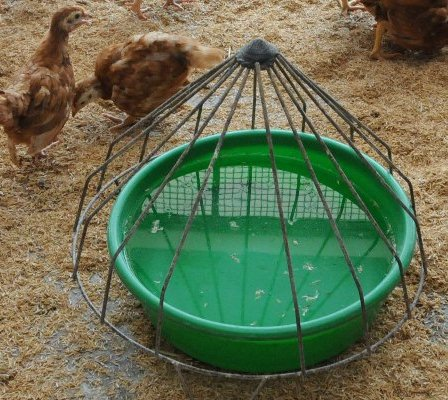Poultry Farm Equipments