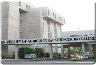mla formatting for research paper sample