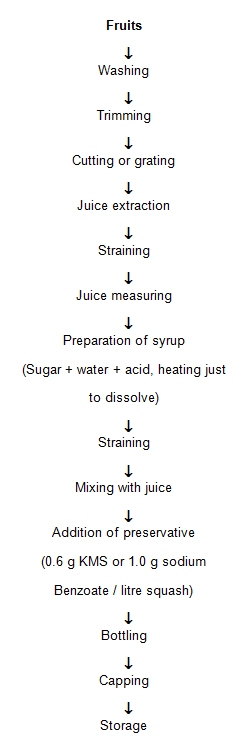fruit juice processing technology pdf